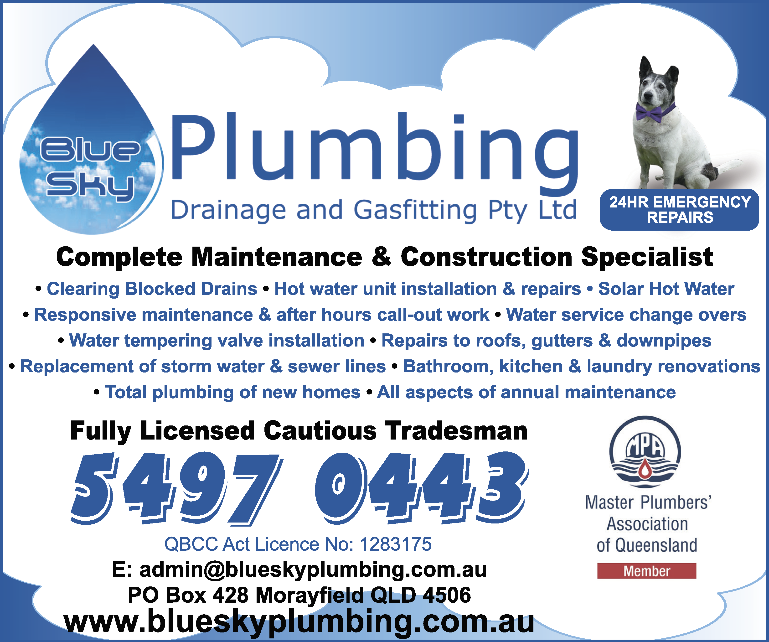 Blue Sky Plumbing Drainage & Gasfitting - Drainers