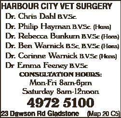 Harbour City Vet Surgery - Veterinary Surgeons, Services